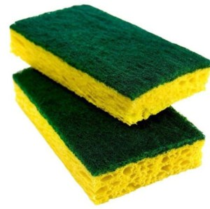 Not sure if wood is rotten? Use the sponge test and it's easier than you think
