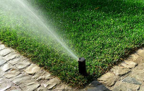 saving water can be as easy as switching to a smart irrigation controller