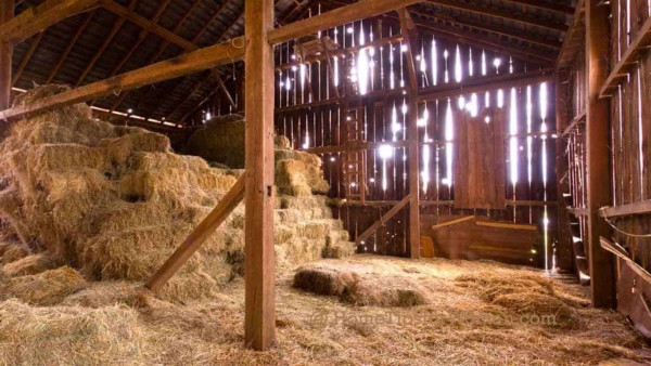country barns provide an incredible amount of storage space
