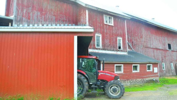 old country barns were used to store farm equipment, house animals & their feed