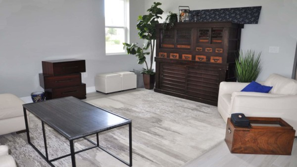 living room showing new rug from one of my favorite furniture companies, crate & barrel