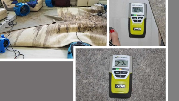 Carpet pad at 43% moisture & floor underneath 24% moisture content, indicating we haven't done enough to avoid mold growth