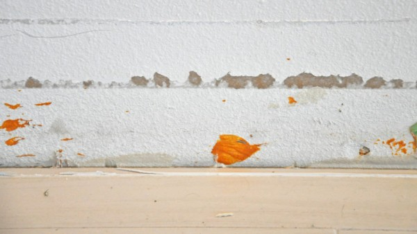 here's mold waiting for the mold remediation process to begin, to remove this bright orange mold ...