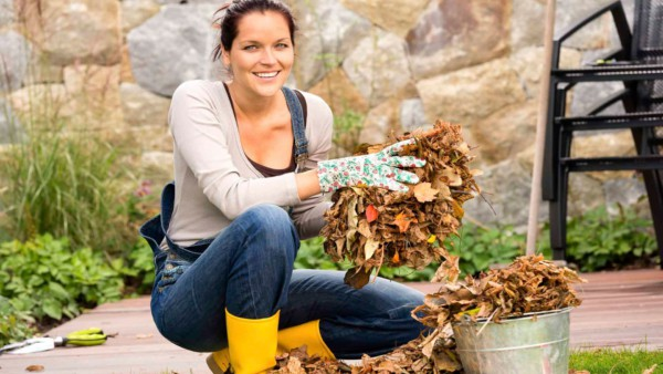 Cleaning gutters, downspouts & leaves on the ground are easy projects depending on your homeowner personality to ... DIY or hiring contractors